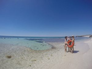 Rottnest Island浮淺